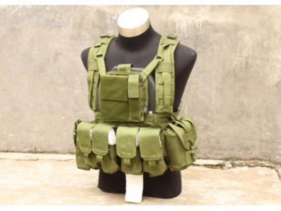 TMC MOLLE RRV Plate Carrier with Pouch ( OD )